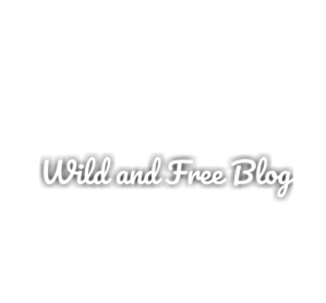 Blog, Wild-and-Free, Sissi